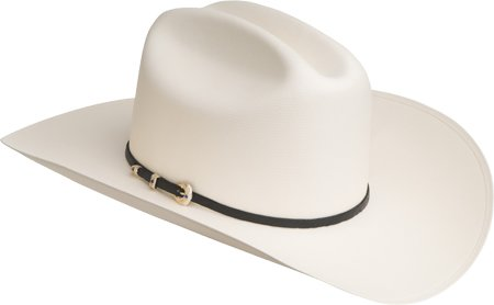 Bailey Western Men's Nervo